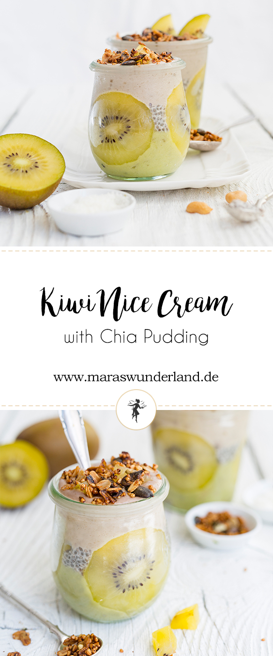 Kiwi Peanut Nice Cream with Chia Coconut Pudding